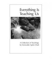 Cover of: Everything Is Teaching Us |