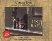 Cover of: A Lucky Dog
