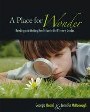 Cover of: A place for wonder