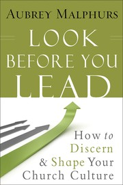 Cover of: Look Before You Lead