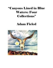 Cover of: Canyons Lined in Blue Waters: Four Collections