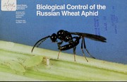 Biological control of the Russian wheat aphid by