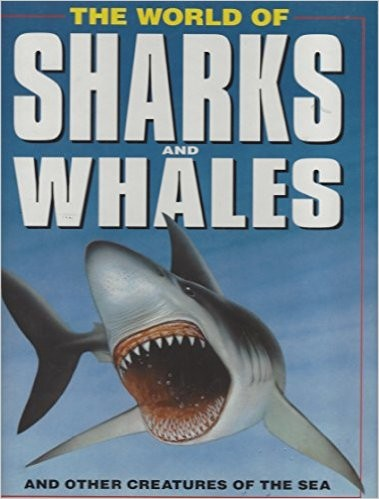 World of Sharks and Whales by Clark, Matthews