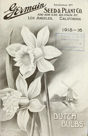 Dutch bulbs