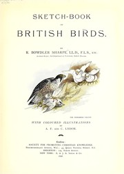 Cover of: Sketch-book of British birds