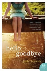 Cover of: Hello Goodbye A Novel