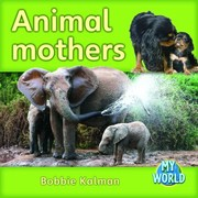 Cover of: Animal Mothers
