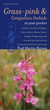 Cover of: Grasspinks Companion Orchids In Your Pocket