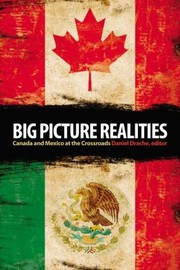 Cover of: Big Picture Realities Canada And Mexico At The Crossroads