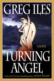 Cover of: Turning angel: A Novel