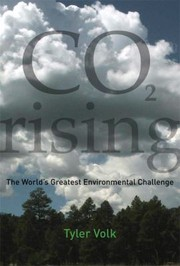 Cover of: Co2 Rising The Worlds Greatest Environmental Challenge