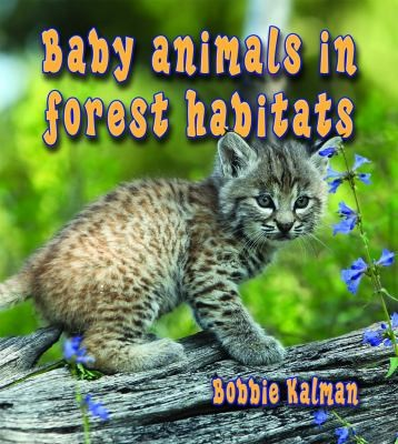 Baby Animals In Forest Habitats by