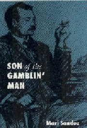 Cover of: Son Of The Gamblin Man The Youth Of An Artist A Novel
