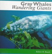 Cover of: Gray Whales