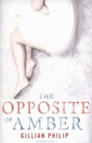 Cover of: The Opposite Of Amber |