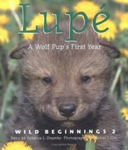 Cover of: Lupe