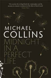 Cover of: Midnight In A Perfect Life