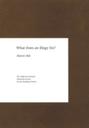 Cover of: What Does An Elegy Do