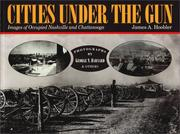 Cities under the gun by James A. Hoobler