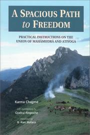 Cover of: A Spacious Path to Freedom