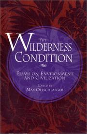 Cover of: The Wilderness condition |