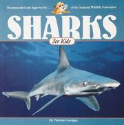 Cover of: Sharks for kids