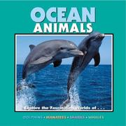 Cover of: Ocean animals explore the facinating worlds of-- |