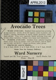 Avocado trees by Ward Nursery