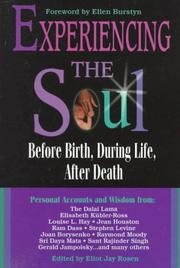 Cover of: Experiencing the soul |