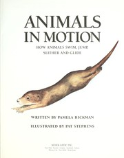 Cover of: Animals in motion | Pamela Hickman