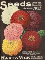 Cover of: Seeds from the flower city | Hart & Vick, Inc
