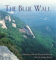 Cover of: The blue wall