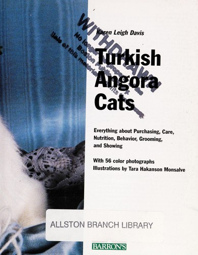 Turkish Angora cats : everything about purchase, care ...