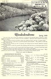 Rhododendrons for spring 1928