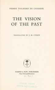 Cover of: The vision of the past