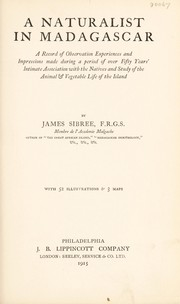 Cover of: A naturalist in Madagascar | James Sibree