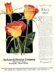Cover of: Fall 1929