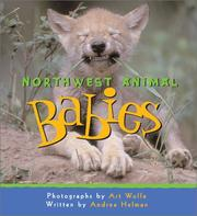 Cover of: Northwest animal babies
