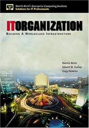 Cover of: IT organization
