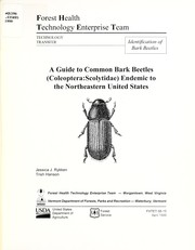 Cover of: A guide to common bark beetles (Coleoptera: Scolytidae) endemic to the northeastern United States | Jessica J. Rykken