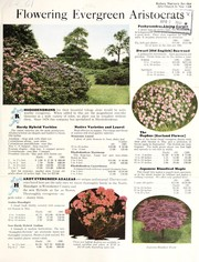 Cover of: Flowering evergreen aristocrats | F.W. Kelsey Nursery Company