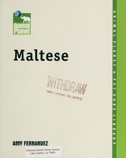Cover of: Maltese | Amy Fernandez