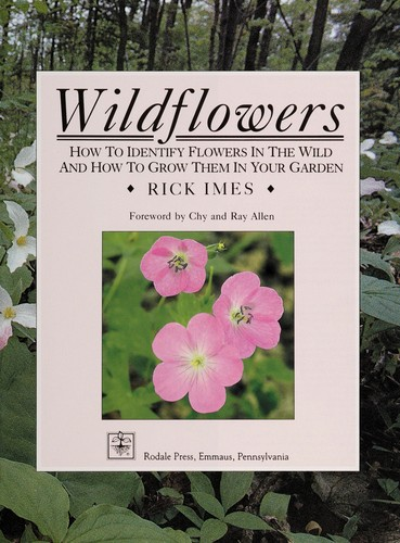 Wildflowers by Rick Imes