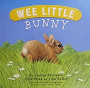 Cover of: Wee little bunny