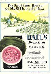 Cover of: Hall