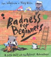 Cover of: Badness for beginners