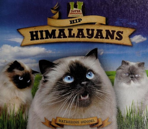 Hip himalayans by Katherine Hengel