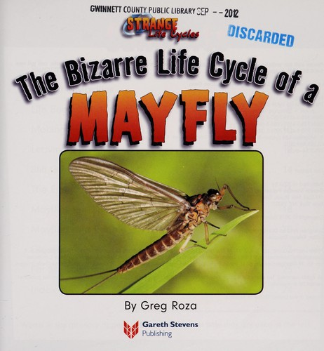 The bizarre life cycle of a mayfly by Greg Roza