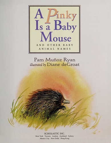 A Pinky Is a Baby Mouse by Pam Munoz Ryan