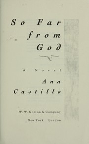 Cover of: So far from God : a novel